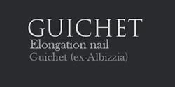 Logo de la société Guichet